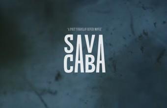 SAVA image